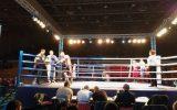 Nastup na večeri profi-boksa u Bečeju